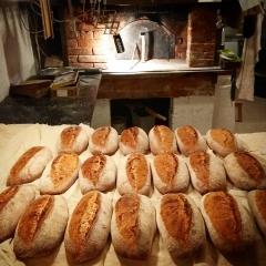 олег пекарь